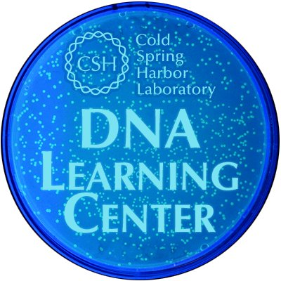 Cold Spring Harbor's DNA Learning Center